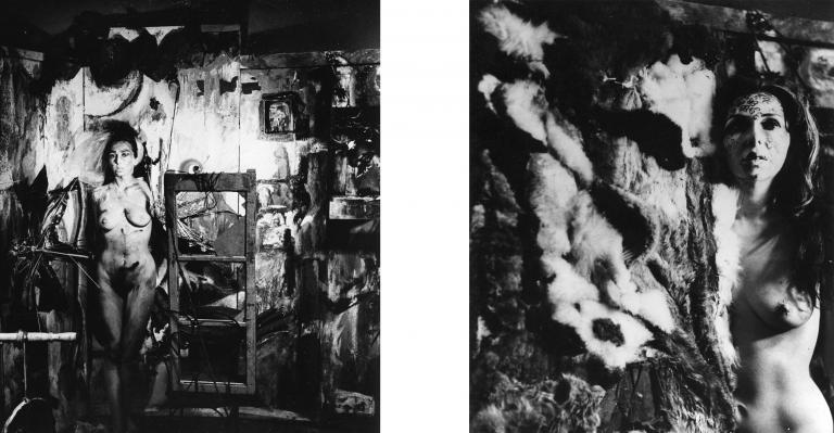 "Carolee Schneemann, ""Eye Body: 36 Transformative Actions for Camera"""